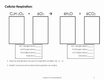 Photosynthesis and Respiration Worksheet Best Of Synthesis and Cellular Respiration Chemical formula