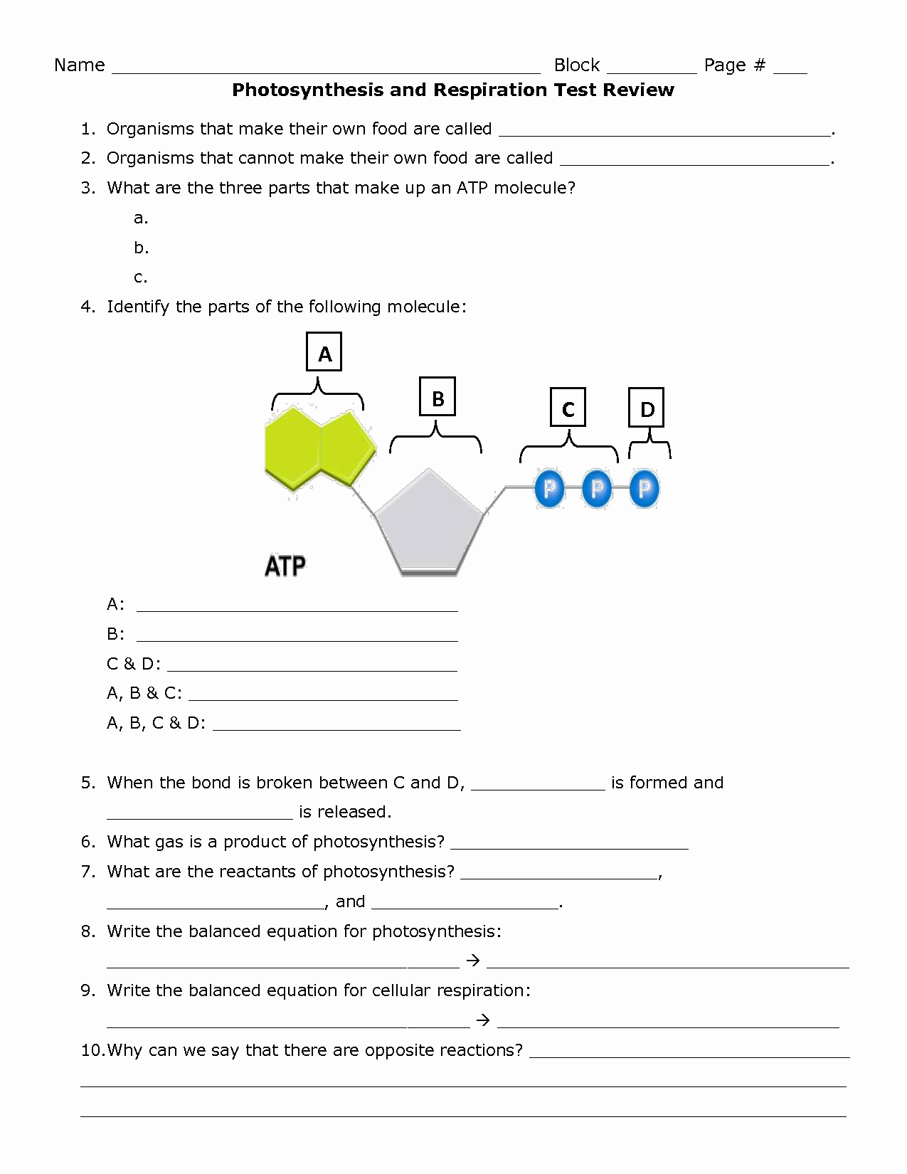 Photosynthesis Worksheet Answer Key Awesome 14 Best Of Synthesis Cellular Respiration