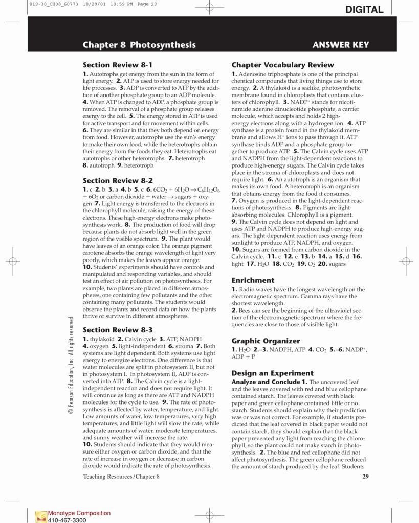 Photosynthesis Worksheet Answer Key Awesome Section 8 1 Energy and Life Worksheet Answer Key