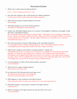 Photosynthesis Worksheet Answer Key Awesome Synthesis Worksheet 1 What is the Overall Equation for