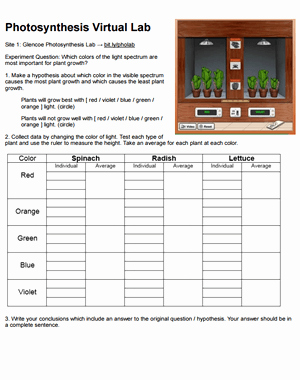 Photosynthesis Worksheet Answer Key New Synthesis Virtual Lab