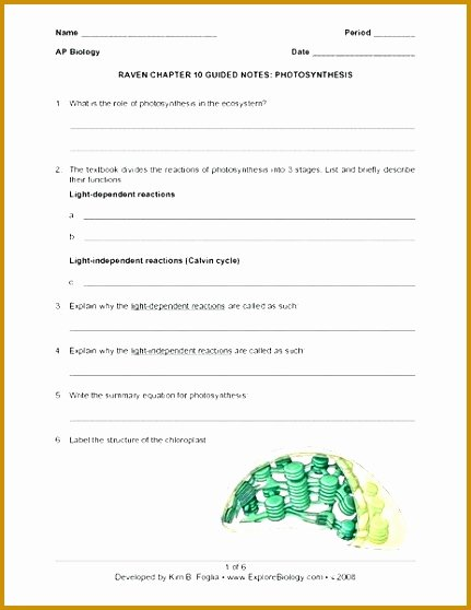 Photosynthesis Worksheet High School Awesome 7 Synthesis Worksheet High School