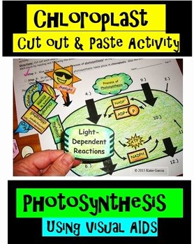 Photosynthesis Worksheet High School Beautiful Chloroplast Cut Out and Paste Activity for Synthesis