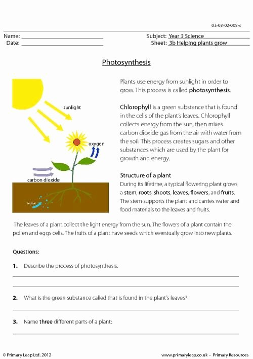 Photosynthesis Worksheet High School Beautiful Primaryleap Synthesis Worksheet