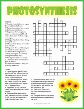 Photosynthesis Worksheet High School Best Of Synthesis Crossword Puzzle by Puzzles to Print