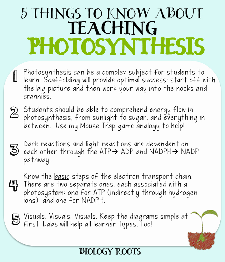 "Photosynthesis Worksheet High School Lovely 5 Helpful Tips About Teaching Synthesis formerly ""5"
