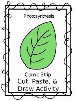 Photosynthesis Worksheet High School Unique Student High Schools and Activities On Pinterest