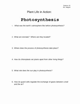 Photosynthesis Worksheet Middle School Best Of Plant Life In Action Synthesis Video Worksheet by