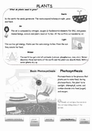 Photosynthesis Worksheet Middle School Lovely Synthesis Lesson for High School English Teaching