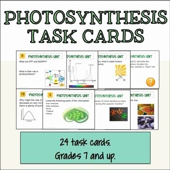 Photosynthesis Worksheet Middle School New 1000 Images About Synthesis Lessons for Middle and