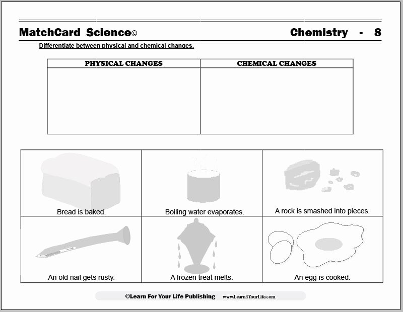 Physical and Chemical Change Worksheet Elegant Physical and Chemical Changes