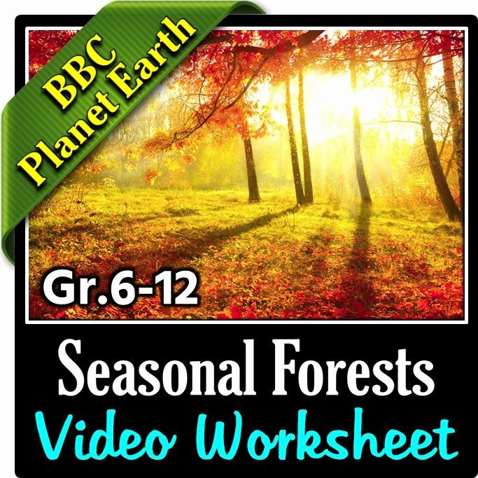 Planet Earth Freshwater Worksheet Answers Best Of Planet Earth Seasonal forests Video Worksheet