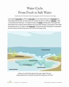 Planet Earth Freshwater Worksheet Answers Unique 1000 Images About Science On Pinterest