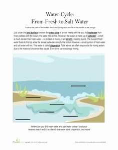 Planet Earth Freshwater Worksheet Fresh Planet Earth Deserts Video Questions Worksheet
