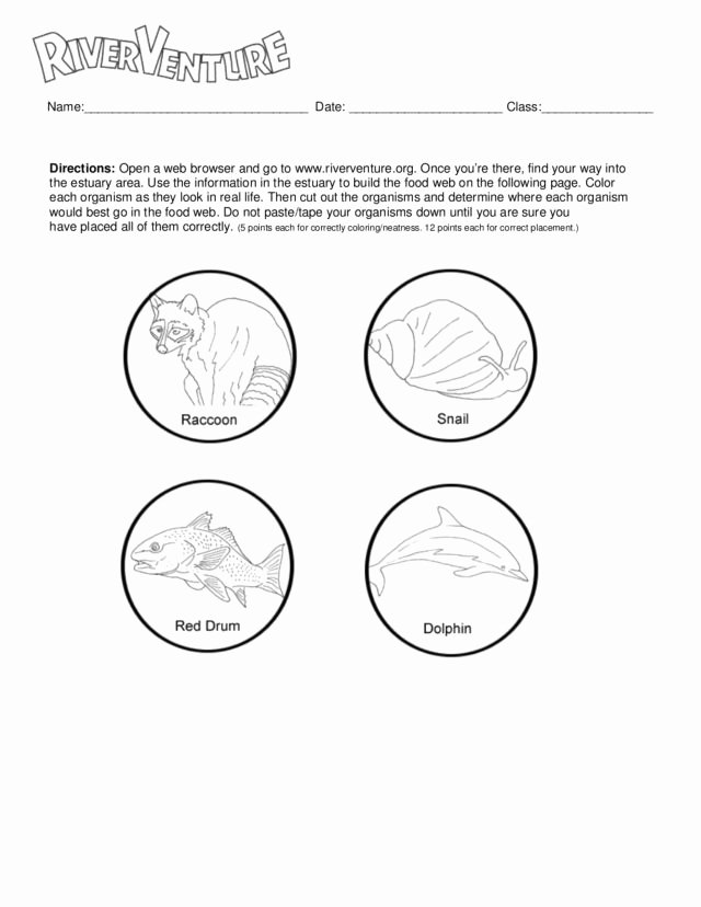 Planet Earth Freshwater Worksheet Lovely River Venture Worksheet for 7th 9th Grade