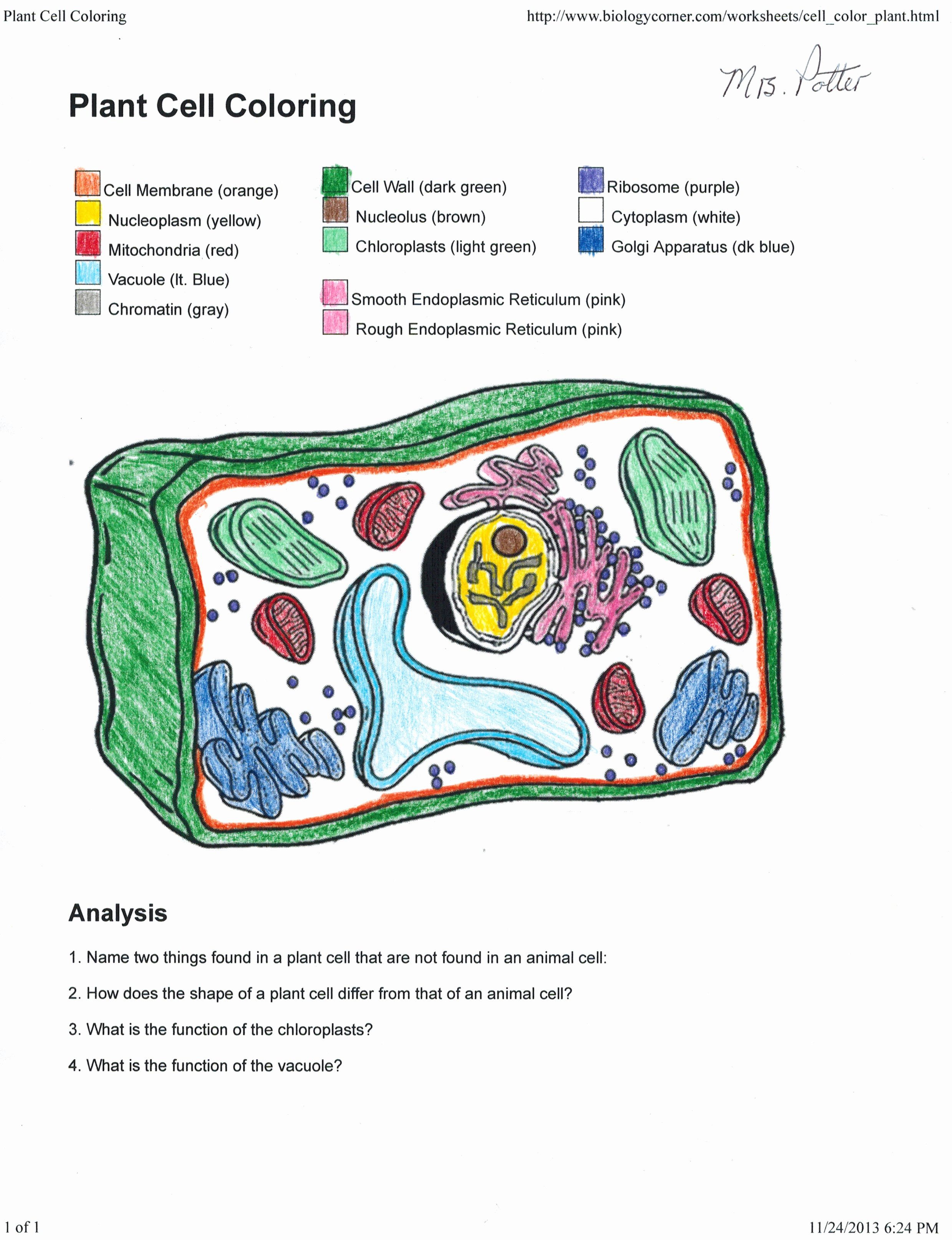 Plant Cell Worksheet Answers New Apologia Biology