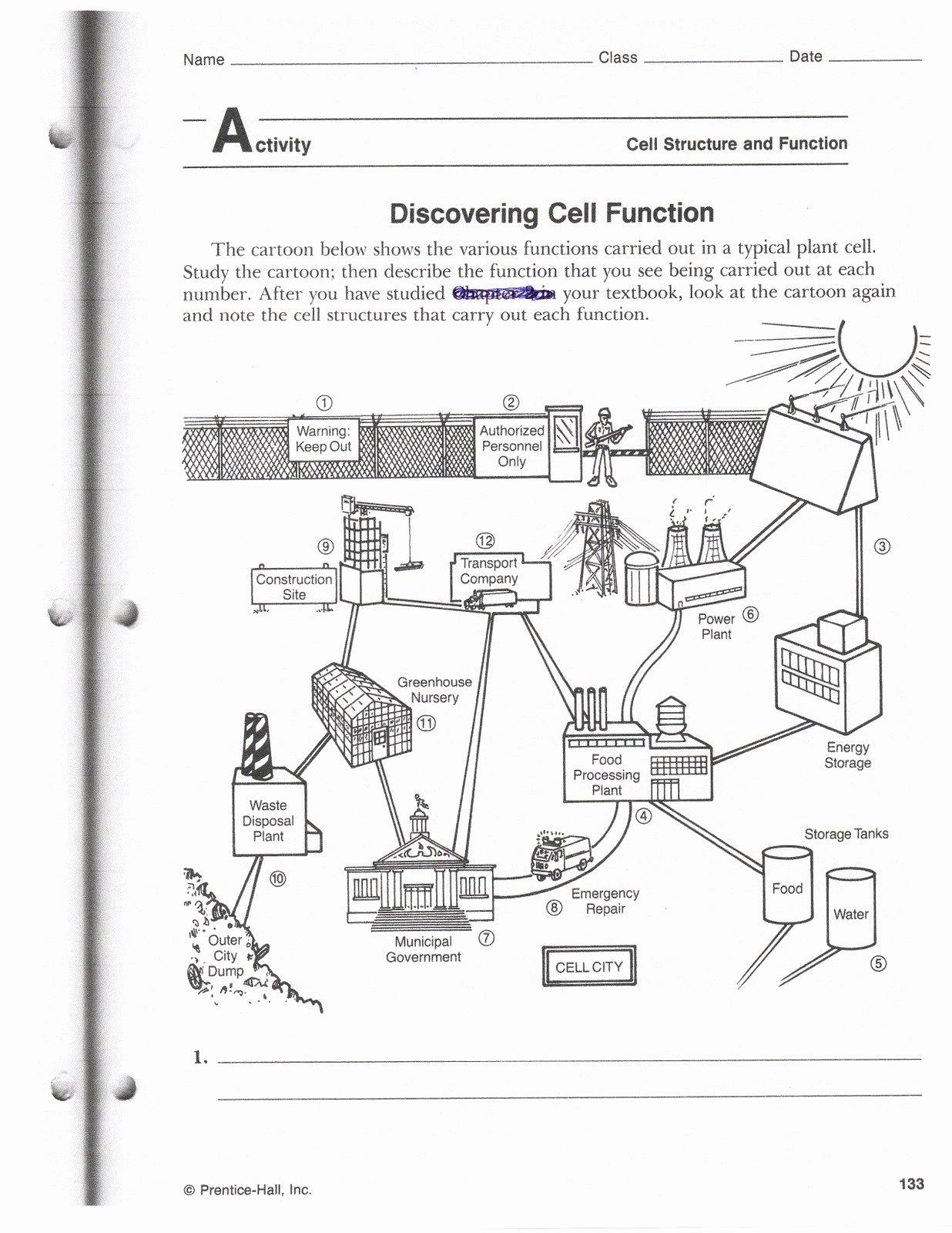 Plant Cell Worksheet Answers New Quarter 2 Copy Mrs Bhandari S Grade 7 Science