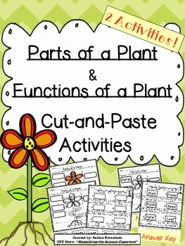 Plant Parts and Functions Worksheet Beautiful Plant Parts and Functions Cut and Paste Activities