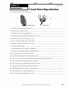 Plant Reproduction Worksheet Answers Awesome Plant Test 2nd Grade sol Science Pinterest