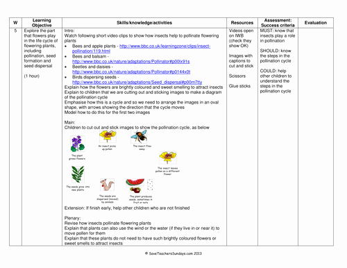Plant Reproduction Worksheet Answers Luxury Life Cycle Of Flowering Plants Plan and Worksheet by