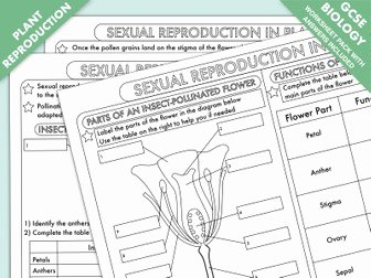 Plant Reproduction Worksheet Answers New Gcse Biology Worksheet Bundle Animal and Plant