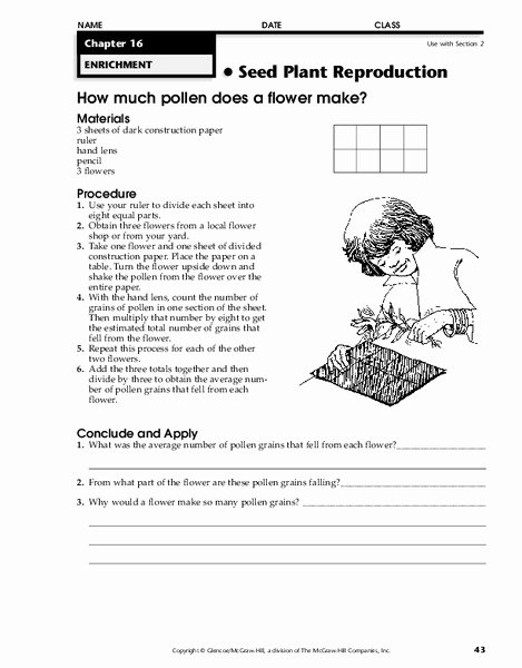 Plant Reproduction Worksheet Answers Unique Seed Plant Reproduction Worksheet for 4th 8th Grade