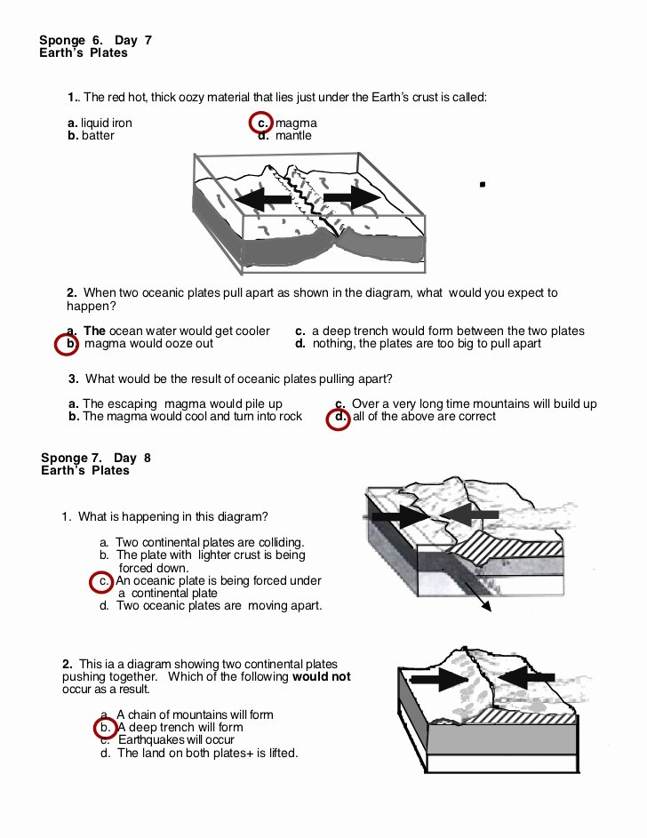 Plate Tectonic Worksheet Answers Best Of Destruct forces Worksheet Answers
