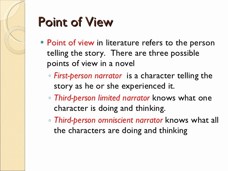 Point Of View Worksheet 11 Beautiful Literary Devices 1 31 11