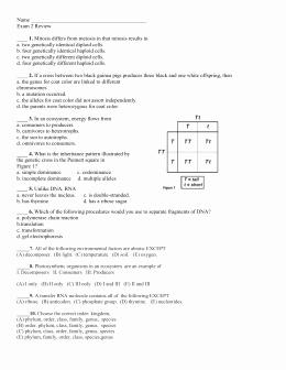 Population Ecology Graphs Worksheet Answers Beautiful Population Ecology Graph Worksheet