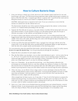 Population Growth Worksheet Answers Fresh Population Growth Worksheet Answers Doc