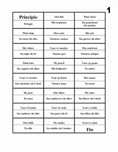 Possessive Adjective Spanish Worksheet Inspirational 1000 Images About Possessive Adjectives On Pinterest