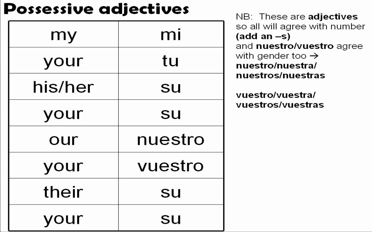 Possessive Adjectives Spanish Worksheet Best Of Pronombres Personales Ejemplos De