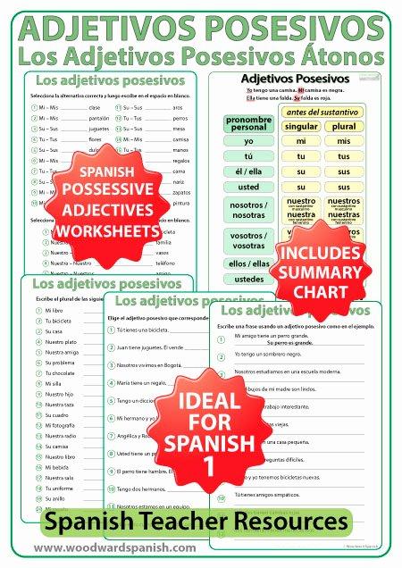 Possessive Adjectives Spanish Worksheet Best Of Spanish Possessive Adjectives Worksheets – Adjetivos