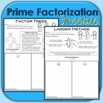Prime Factorization Tree Worksheet Awesome 25 Best Ideas About Prime Factorization On Pinterest
