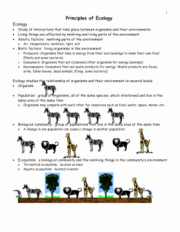 Principles Of Ecology Worksheet Answers Awesome Basic Ecology Notes Ppt Worksheet Name