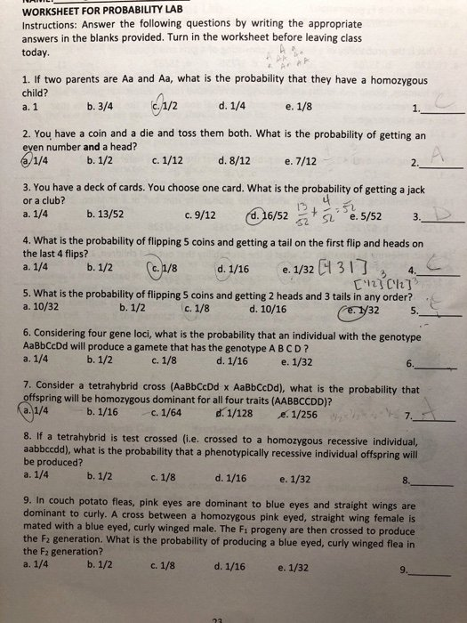 Probability Worksheet with Answers Beautiful solved Worksheet for Probability Lab Instructions Answer