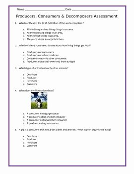 Producer Consumer Decomposer Worksheet Awesome Producers Consumers & De Posers assessment 4th Grade