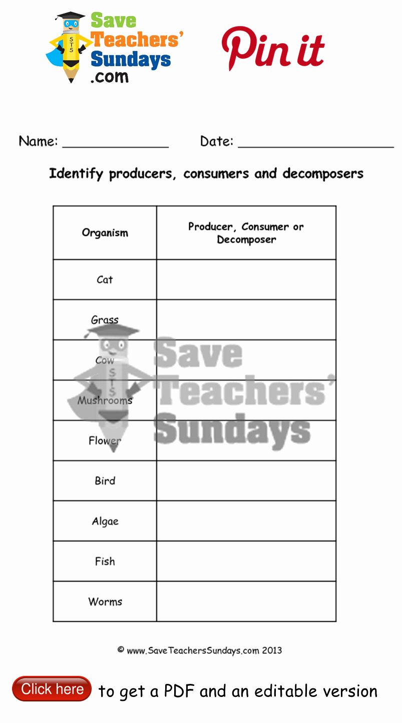 Producer Consumer Decomposer Worksheet Beautiful Line Activity On Identifying Producers Consumers and