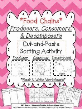 Producer Consumer Decomposer Worksheet Best Of Food Chains Producers Consumers and De Posers Cut and