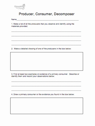 Producer Consumer Decomposer Worksheet Best Of Growing the Next Generation