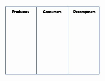 Producer Consumer Decomposer Worksheet Best Of Producers Consumers and De Posers Activity by Simply