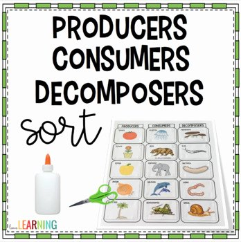 Producer Consumer Decomposer Worksheet Best Of Producers Consumers and De Posers sort Activity by