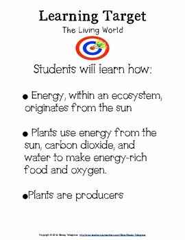 Producer Consumer Decomposer Worksheet Best Of Producers Consumers De by the Learning Lab by