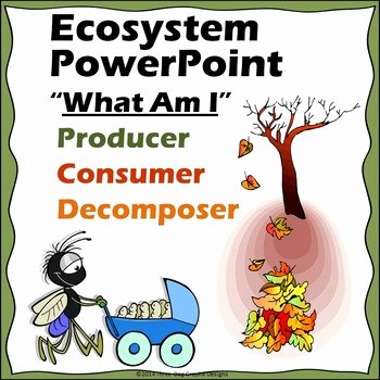 Producer Consumer Decomposer Worksheet Elegant Ecosystem Powerpoint Producer Consumer or De Poser