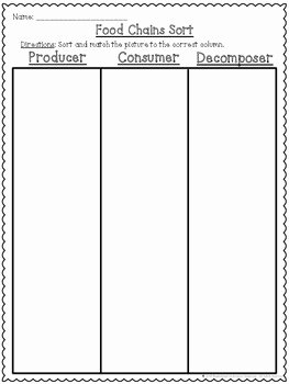 Producer Consumer Decomposer Worksheet Elegant Food Chains Producers Consumers and De Posers Cut and