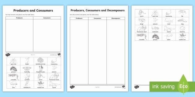 Producer Consumer Decomposer Worksheet Elegant Producers Consumers and De Posers sorting Worksheet
