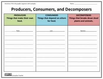 Producer Consumer Decomposer Worksheet Elegant Producers Consumers De Posers Graphic organizer