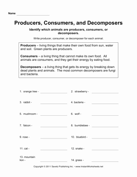 Producer Consumer Decomposer Worksheet Luxury Producers Consumers De Posers