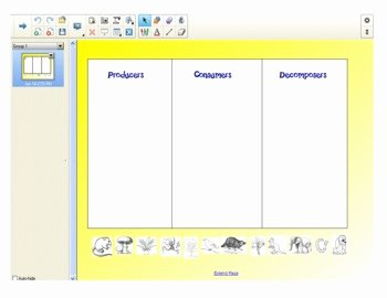 Producer Consumer Decomposer Worksheet New Producers Consumers and De Posers Activity by Simply