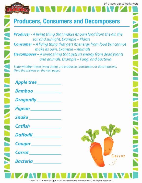 Producer Consumer Decomposer Worksheet Unique Producers Consumers & De Poses Worksheet – 6th Grade – sod